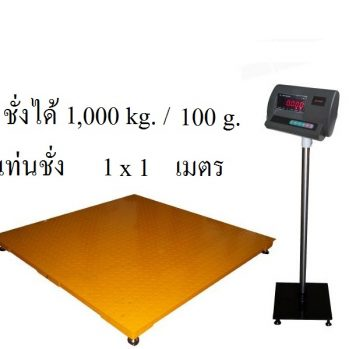 A12E (NEW)  Floor Scales 1010