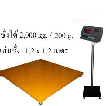 A12E (NEW)  Floor Scales 1212