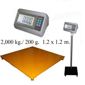 T7  Platform Scales (แท่นใหญ่) copy 1212